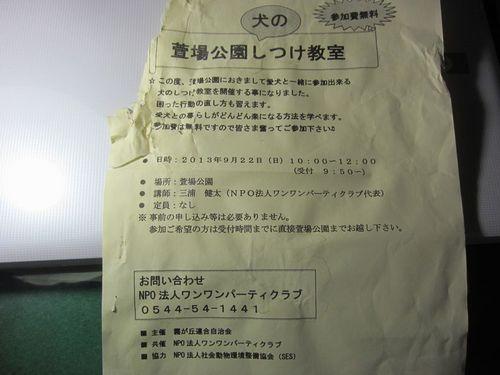 IMG_6627.JPG